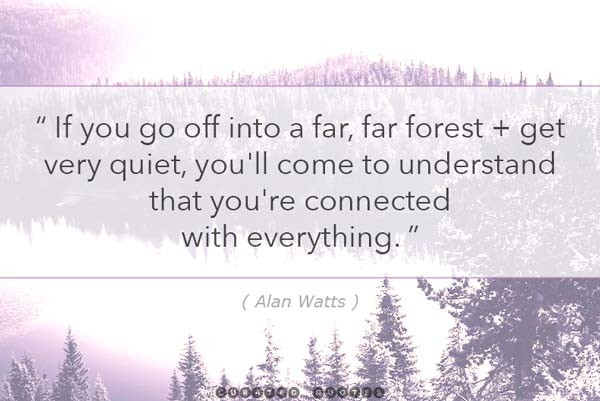 Alan Watts Quiet Forest